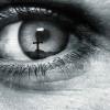 I Spy God
